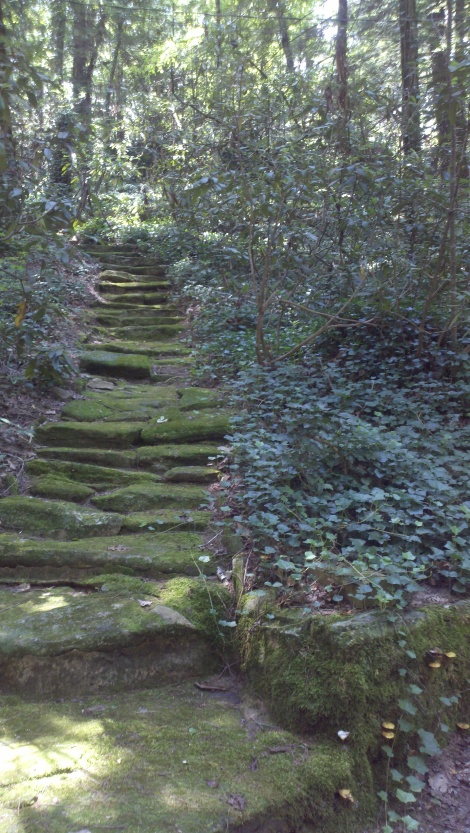 moss + stone stairs/clayton, ga/august 2012