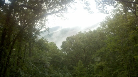 smokey/clayton, ga/august 2012