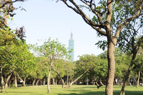 you can see taipei 101 from almost anywhere in the city/da'an park, taipei/dec 2012