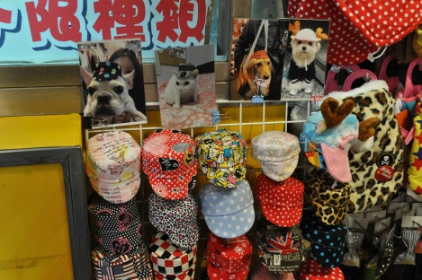 a hat for your cat!/shida night market, taipei/dec 2012