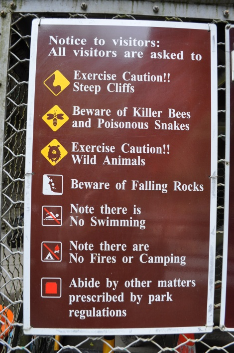 luckily we didn't run into any killer bees/hualien, taiwan/jan 2013