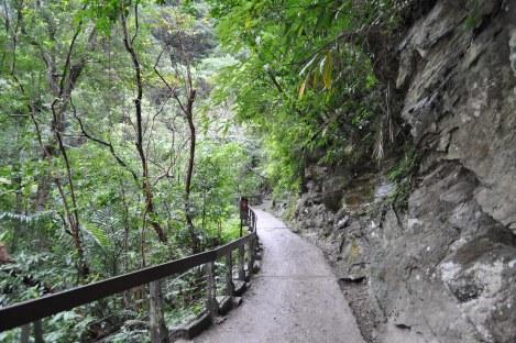 ze trail/hualien, taiwan/jan 2013