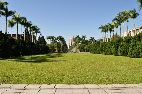 lawn in front of library/taida/dec 2012
