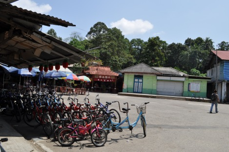 we chose to walk instead of renting bikes. maybe next time!/pulau ubin, singapore/march 2013