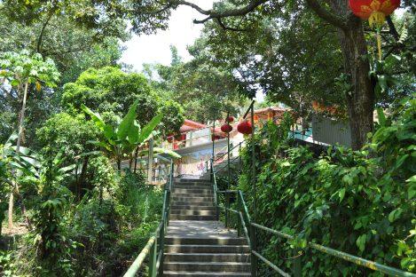 jungle temple/pulau ubin, singapore/march 2013