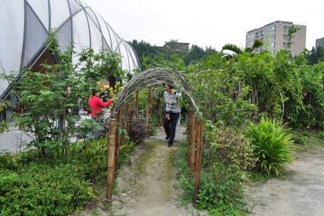 taipei expo park/taiwan/dec 2012
