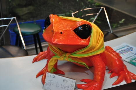wacky babushkaed frog at the information desk